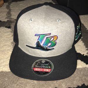 Tampa bay stingrays SnapBack